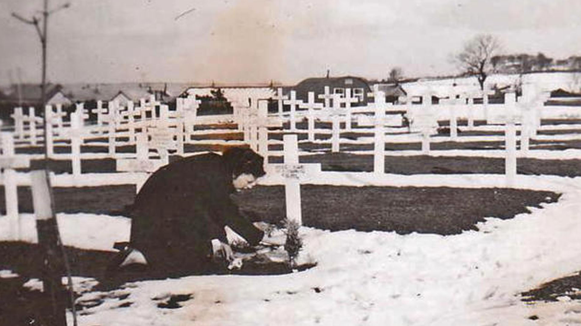 """A woman tends the grave of Corporal John """"Jack"""" Gibson who was killed when B17 41-24451 crashed on Slieveanorra on 3rd October 1942. Photo taken at Lisnabreeny American Cemetery, Castlereagh, Belfast and published in Duluth News Tribune. Copyright unknown."""